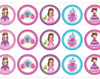 Fairytale Princess 1 Inch Circles Bottle Cap Images ~ Instant Download ~ Frog Carriage ~ Birthday Printable Image Sheet PR-456