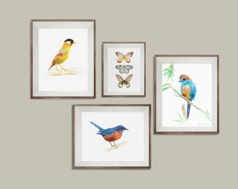 Bird Wall Art Decor, Set Of 4 Prints, Bird Art Print Set, Watercolor