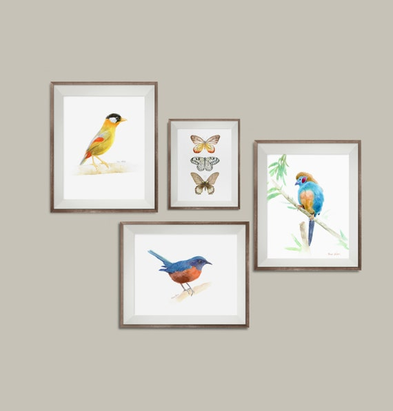 Wall Painting Designs Birds : Bird wall art decor set of prints print