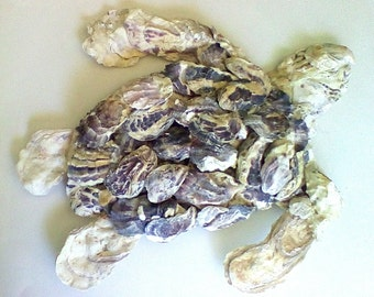 Oyster shell Sea turtle Sculpture