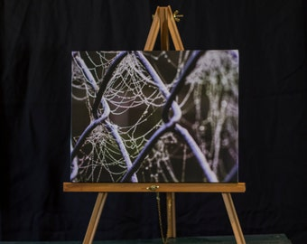 11x14 Gallery Wrapped Canvas of a Spider web on a fence in the fog