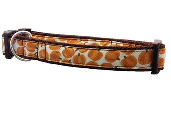 Fall Pumpkins Buckle Dog Collar