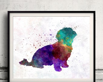 Havanese in watercolor 8x10 in. to 12x16 in. Fine Art Print  Poster Decor Home Watercolor Illustration - SKU 1255