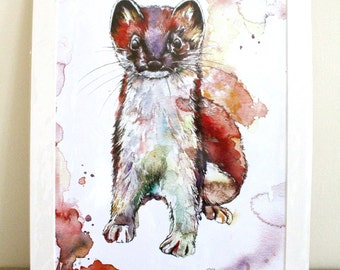 Thomas The Weasel Limited Edition A3 Painting Watercolour Colour Print