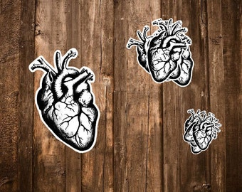 Heart Stickers - 5 Anatomical Heart Stickers/Science Gifts,Valentine Stickers, Black and White Hand Drawn Anatomy Sticker Pack, Medical Gift