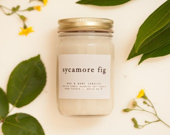 Sycamore Fig - 12 Oz Candle - best seller fig soy candle