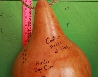 Birdie Daycare!  Gourd Birdhouse
