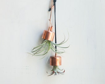 Hanging Planter Copper Bell with Airplant