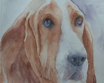 Bassett Hound watercolour painting