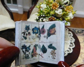 """Book thumbnail shown """"Youth Botany"""" accessory Decoration Dollhouse Miniature Library - scale 1/12"""