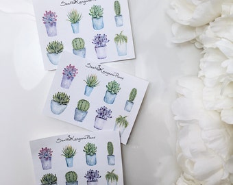 Watercolour Succulents (8 Planner Stickers) || SeattleKangarooPlans