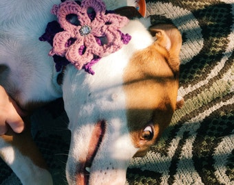 Dog Collar Corsage - Handmade Crochet Flower Accessory