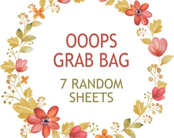 Ooops Grab Bag, Planner Stickers, Misfit Stickers, Grab Bag Stickers, Happy Planner Stickers, Erin Condren Stickers, Mystery Stickers