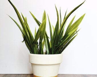White and Gold - Plant Pot - Painted Pot - Planter - Cactus Pot - Succulent Planter - Flower Pot - Terracotta