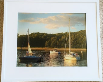 Harbor sailboats