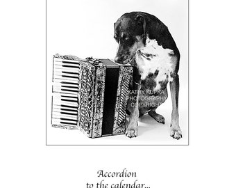 Accordion Card, Squeezebox, All Occasion Card, Dog Card, Humor, Catahoula Hound, Accordion, Happy Birthday Card, Anniversary, Kathy Kupka