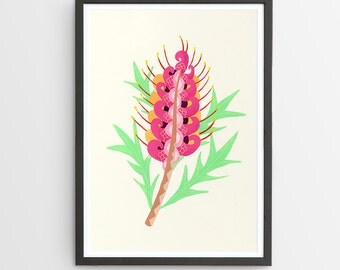 Grevillia Flower Art Print / Australian Flora / Giclee Print / Poster / Flower Print / Native Flora