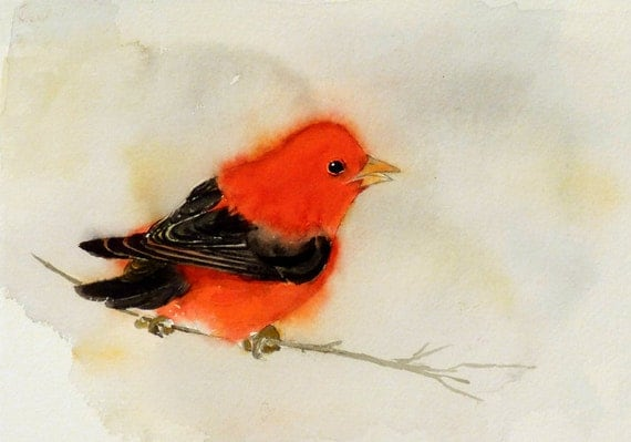 Bird Painting / Artwork Print / Small red watercolor bird art painting / Colorful singing bird / House gift Scarlet Tanager wildlife animal