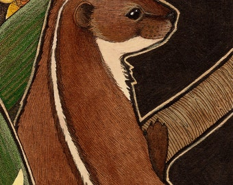Back Striped Weasel and Orchids - Original Art