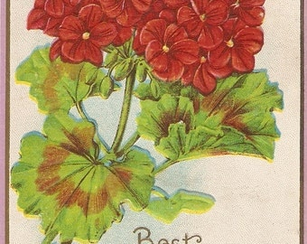 Vintage Red Geranium Happy Birthday Postcard, red flower vintage postcard vintage postcard, SharonFosterVintage
