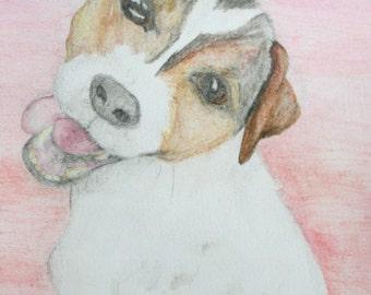 Custom Pet Portrait, Watercolor, 6 x 6'