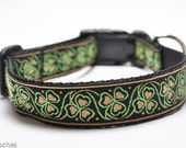 Shamrock Dog Collar in Gold and Lime / Luck of the Irish in Gold / Custom Dog Collar