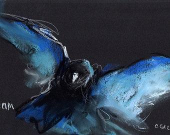 Original Pastel Bird Raven Crow Art on Black Canson Paper