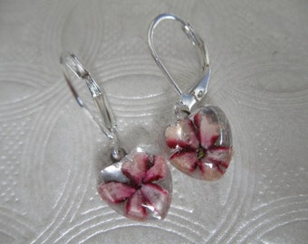 Soft Pink, Hot Pink Pinwheel Verbena Pressed Flower Tiny Glass Heart Earrings-Nature's Art-Symbolizes Enchantment-Gifts Under 25