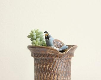 Mini California Quail Figurine - terrarium miniature bird, garden decoration, animal figure, indoor garden art, plant lover gift