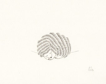 Hedgehog - Small original illustration on paper - limited edition