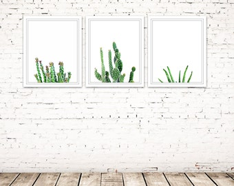 succulent wall art, cactus art set of 3 photos, succulent prints, cactus prints, gallery wall photos, green wall art, cactus photography