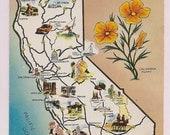 California Map Postcard Poppy - 1960's Travel