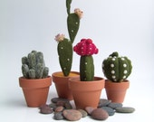 Cactus, Plant, Home Decor, Gift, Needle Felted, Green