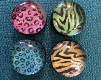 Animal Print Glass Magnets