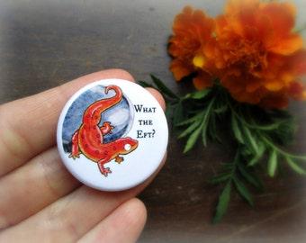 Red Eft Newt Button - Salamander Pin - Herpetology Humor