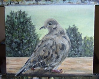 original Dove Looks Back painting acrylic 8x10