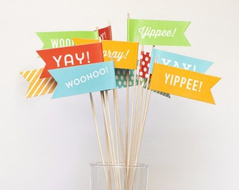 Hooray Flag Set - Large - Mix 12 pack - Yay! Hooray! Yippee! Woohoo!