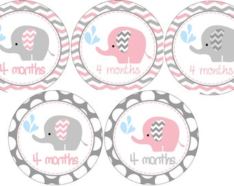 Pink chevron Elephant Onesie 1 -12 month stickers,pink and Gray Onesie Sticker,Green Chevron Monthly onesie stickers. 14 stickers Total.
