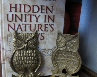 Brass OWL Bookend SET of 2 vintage pair display cabin lodge