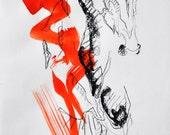 Galloping Horse, Animal, ...
