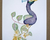 Botanica peacock, limited and signed print