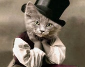 D.W. Booker, Vintage Cat Print, Cat in Tophat, Anthropomorphic, Whimsical Cat Art, Unique Cat Art, Funny Cat, Digital Art Print, Cat Cards