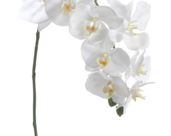 Wedding Flowers Phalaenopsis Orchid Spray in Creamy White Elegant Wedding Silk Flowers for Bouquets and Wedding Decorations