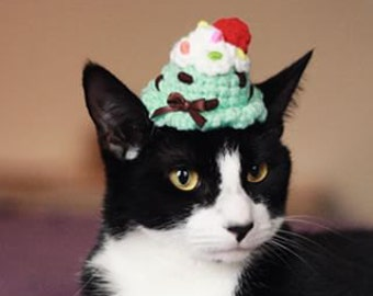 Cat Hat - Ice Cream Scoop Party Hat - Small Dog Hat