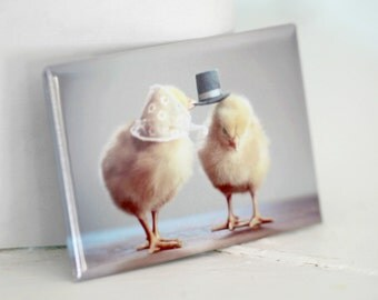 Chicks in Hats Chickens In Miniature Hats Cute Chickens Baby Animal Magnet