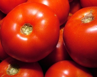Rutgers Tomato Seeds Heirloom Non GMO