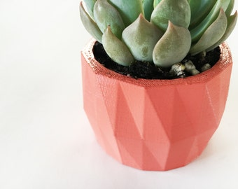 Mini Geometric Planter with Succulent | Perfect for Home and Office Decor | Great Gift | Designer | Plant Lady | Modern Home