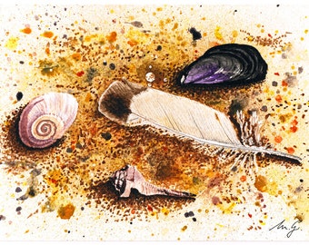 Shells and Feather Original Watercolour Painting