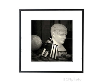Phrenology Head, anatomy art, psychology gift, psychology art, neurology, anatomy decor, Anatomical Head,