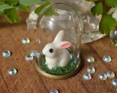 White Rabbit, Alice in Wonderland, Terrarium Necklace, Glass Dome Jewelry, Miniature Necklace, Gift for Daughter, Miniature Decor, Bunny